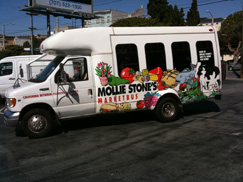 Mollie Bus Photo