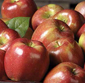 Picture of Fresh Braeburn Apples