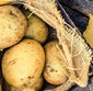 Picture of Idaho Russet Potatoes