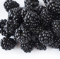 Picture of Sweet Blackberries