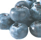 Picture of Fresh Blueberries