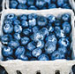 Picture of Delicious Blueberries