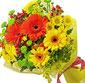 Picture of Lemonade Series Bouquet