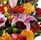 Picture of Rainbow Blooms Bouquet