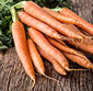 Picture of Organic Bunch Carrots