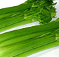 Picture of Market Fresh Celery