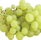 Picture of Crisp Green Grapes