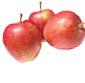 Picture of Braeburn Apples