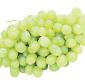 Picture of Extra Large Green Seedless Grapes