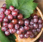 Picture of XL Red Flame Seedless Grapes