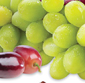 Picture of Fresh Red or Green Seedless Grapes