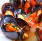 Picture of Fresh Live Mussels in the Shell