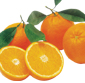 Picture of Large Sweet Navel Oranges