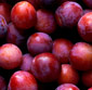 Picture of Red or Black Plums