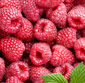 Picture of Sweet Raspberries