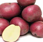 Picture of B Size Red Potatoes