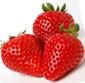 Picture of Naturipe Red Ripe Strawberries