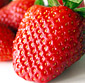 Picture of Fresh Red Ripe Florida Strawberries