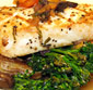 Picture of Swordfish Loins