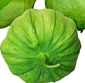 Picture of Serrano or Pascilla Peppers, Tomatillos, Chayote Squash,