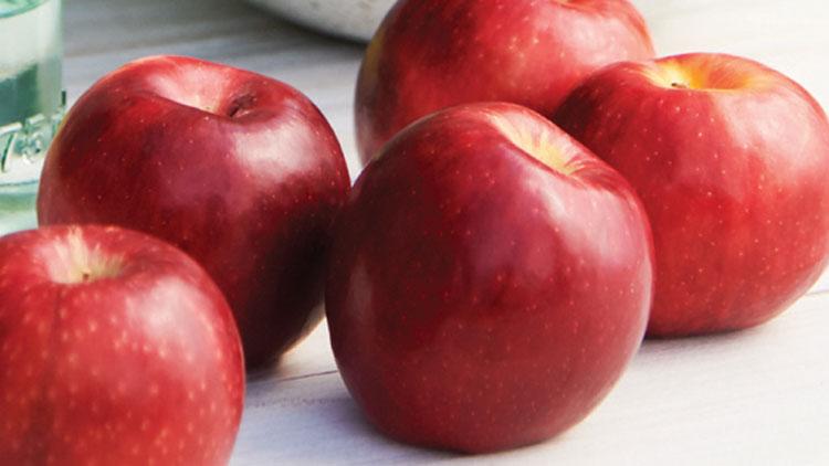 Picture of Washington Cosmic Crisp Apples