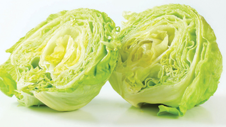 Picture of Iceberg Lettuce