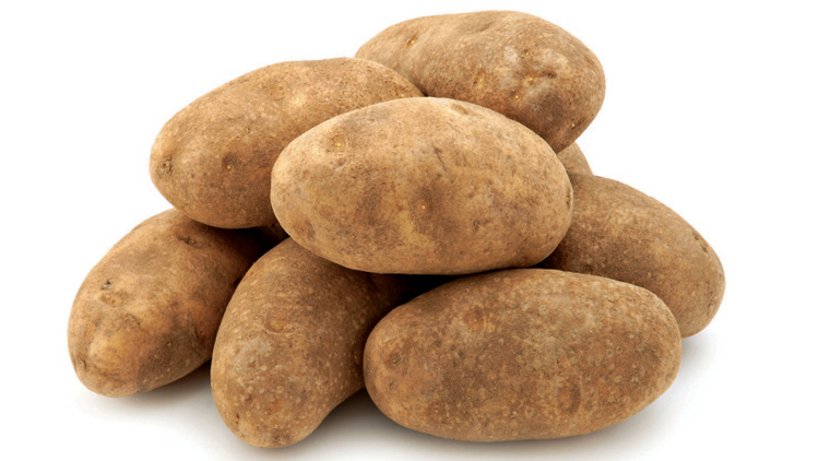 Picture of Best Choice Jumbo Russet Potatoes
